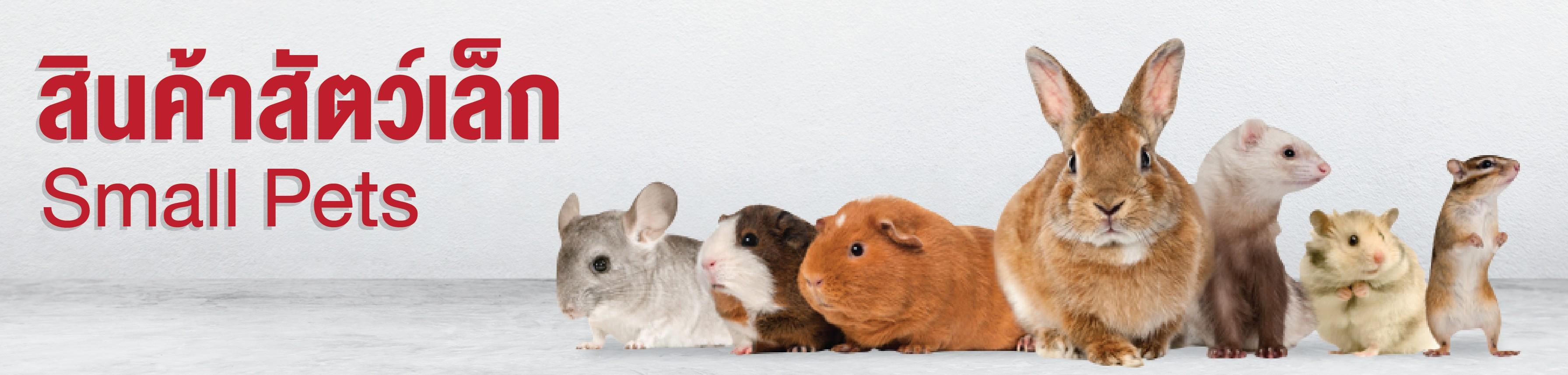 small pets