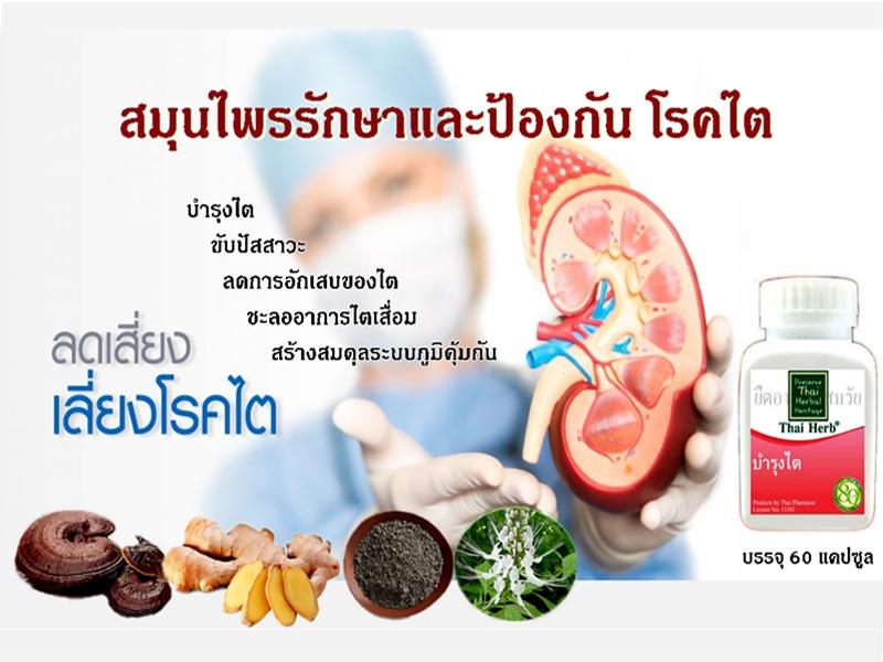 สมุนไพรรักษาโรค ป้องกันโรค สมุนไพรบำรุงไต อาการของโรคไต การรักษาโรคไต ThaiHerb