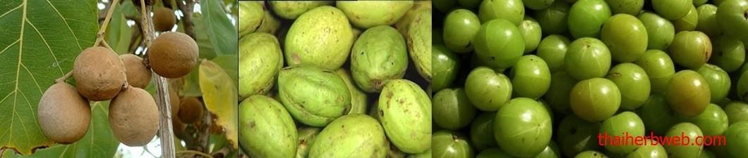 สมุนไพรล้างพิษ ดีท็อกซ์ Detox ตรีผลา Thai Herb จาก มะขามป้อม สมอไทย สมอพิเภก น้ำผึ้ง