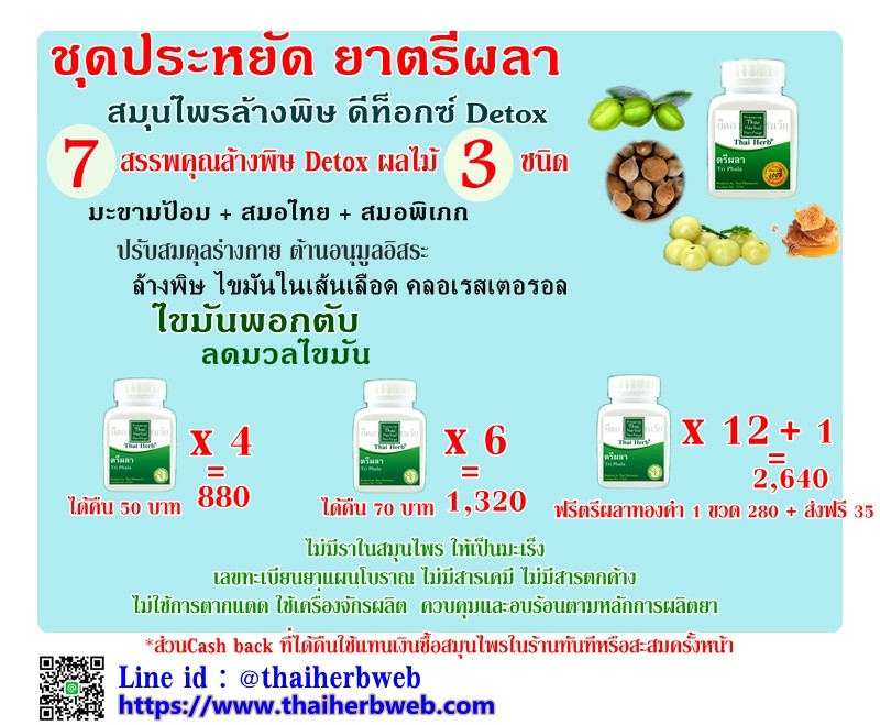 สมุนไพรรักษาโรค ตรีผลา Thai Herb ล้างพิษ ดีท็อกซ์ Detox ไขมันพอกตับ