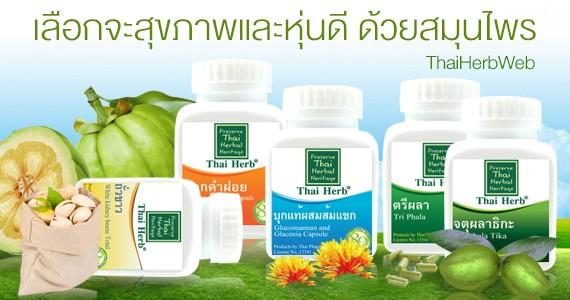 สมุนไพร รักษาโรค Thai Herb ลดความอ้วน ลดไขมันส่วนเกิน