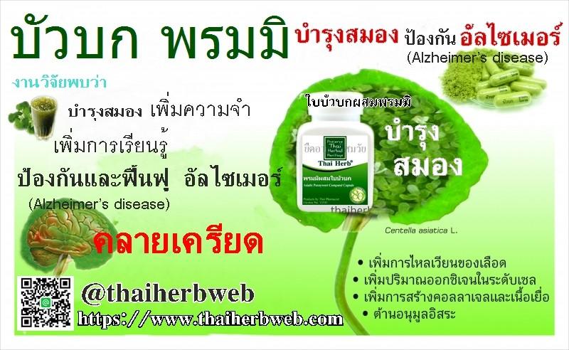 ใบบัวบก Thai Herb สมุนไพร รักษาโรค ป้องกัน สมองเสื่อม อัลไซเมอร์ ขี้ลืม