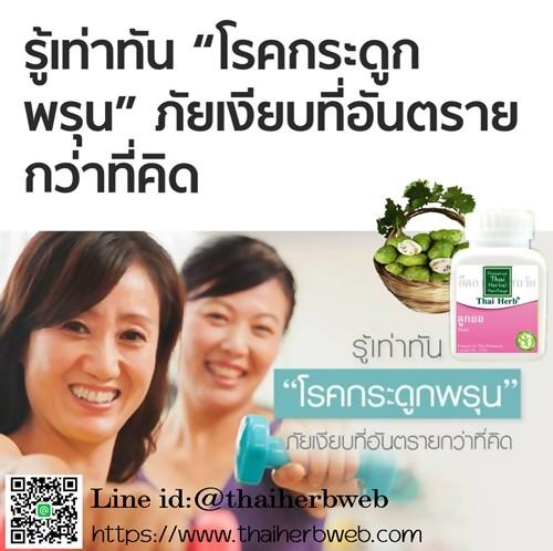สมุนไพรรักษาโรค ลูกยอ Thai Herb บำรุงกระดูก ป้องกันกระดูกพรุน ช่วยย่อย โรคกรดไหลย้อน