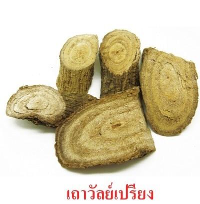 สมุนไพรรักษาโรค เถาวัลย์เปรียง ThaiHerb ข้อเข่าเสื่อม ปวดเมื่อย คลายกล้ามเนื้อ