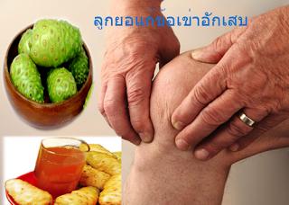 ลูกยอ Thai Herb โรคกรดไหลย้อน ป้องกันกระดูกพรุนช่วยย่อย ท้องอืด ท้องเฟ้อ ขับลม บำรุงกระดูก แก้อาเจียน