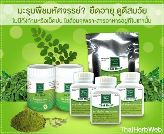 สมุนไพรรักษาโรค ล้างพิษ ไขมันพอกตับ แคปซูล Thai Herb
