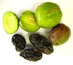 สมุนไพรล้างพิษ-ดีท็อกซ์-detox-ตรีผลา-thai-herb-จาก-มะขามป้อม-สมอไทย-สมอพิเภก-น้ำผึ้ง