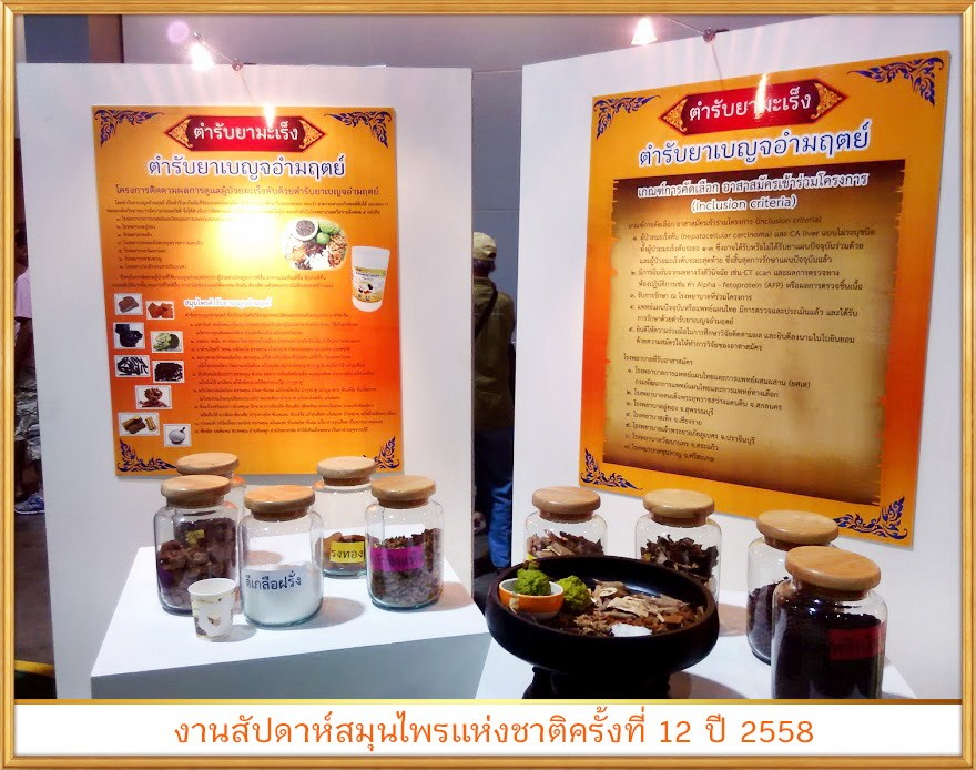 สมุนไพรรักษาโรค เบญจอำมฤตย์ Thai Herb มะเร็งตับ ล้างระบบน้ำเหลือง ล้างเลือดเสีย ทำความสะอาดร่างกาย