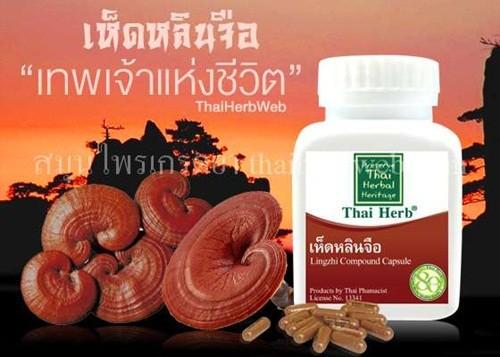 สมุนไพรรักษาโรค เห็ดหลินจือ แคปซูล thai herb สรรพคุณ รักษาโรค ต้านมะเร็ง บำรุงร่างกาย