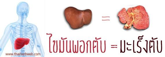 สมุนไพรรักษาโรค ไขมันเกาะตับ ตรีผลา