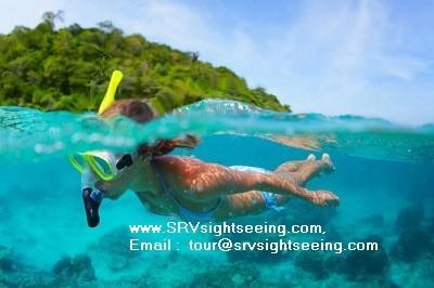 Snorkeling equipment at TREE Islands in Pattaya