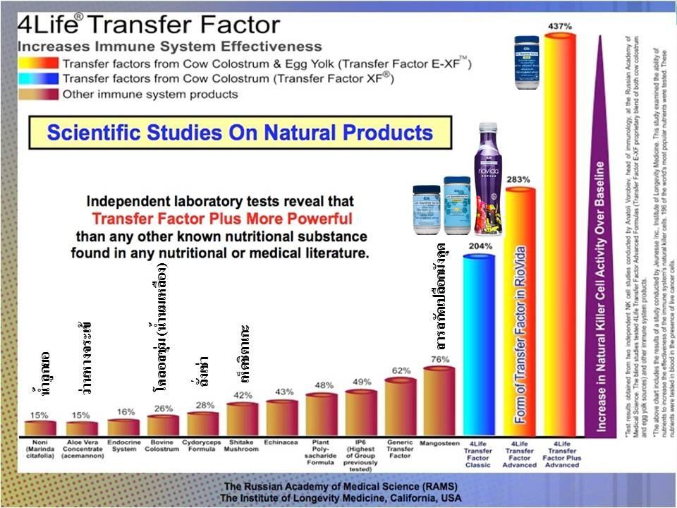 ทรานสเฟอร์ แฟกเตอร์ เพิ่มประสิทธิภาพการทำงานของเซลล์เพชรฆาต (NK Cells) ได้สูงสุดเมื่อเที่ยบกับผลิตภัณฑ์ธรรมชาติอื่นๆ