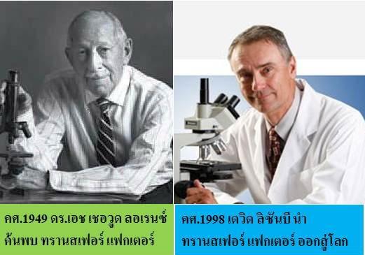 4ไล้ฟ์ ผู้นำด้านวิทยาศาสตร์สุขภาพ