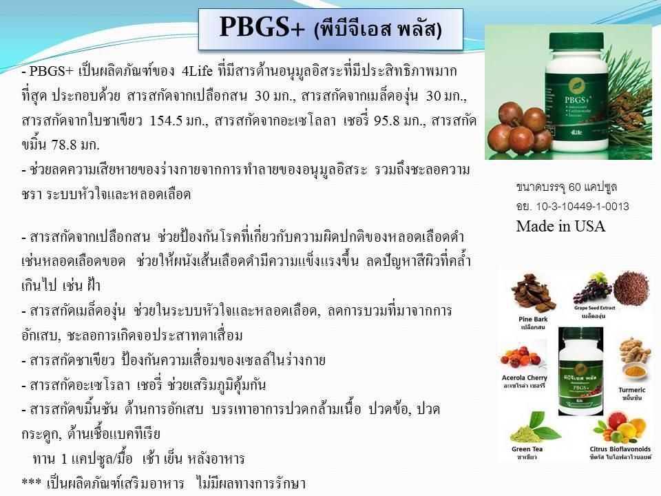 พีบีจีเอสพลัส PBGS+