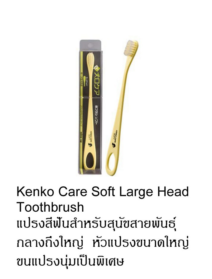 kenko care soft large gead