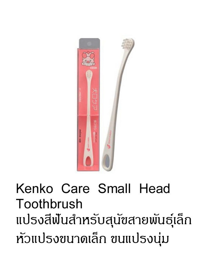 kenko care small head