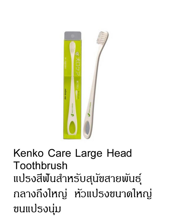 kenko care large head
