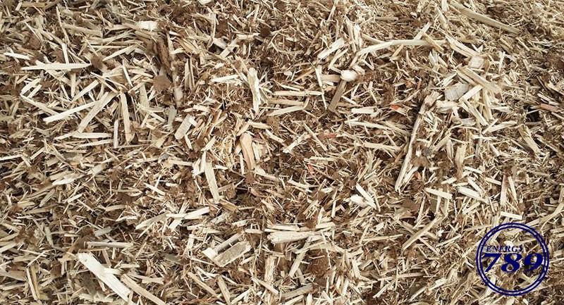 wood-chips-by-stump-grinder