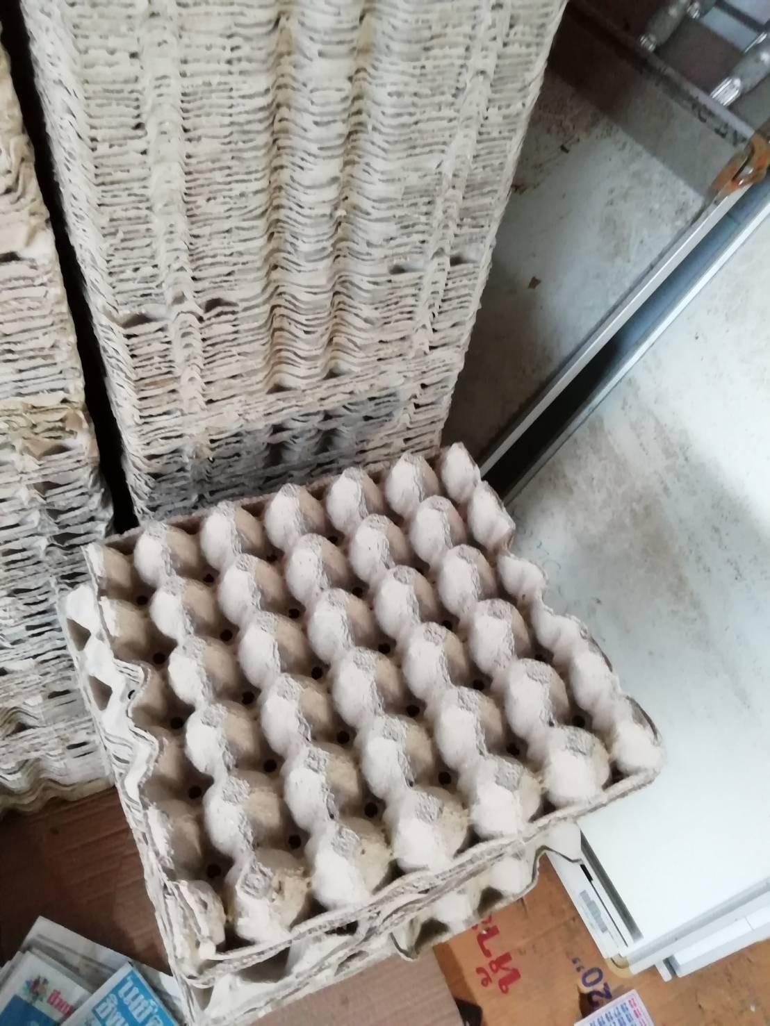 ขายกระดาษลังไข่