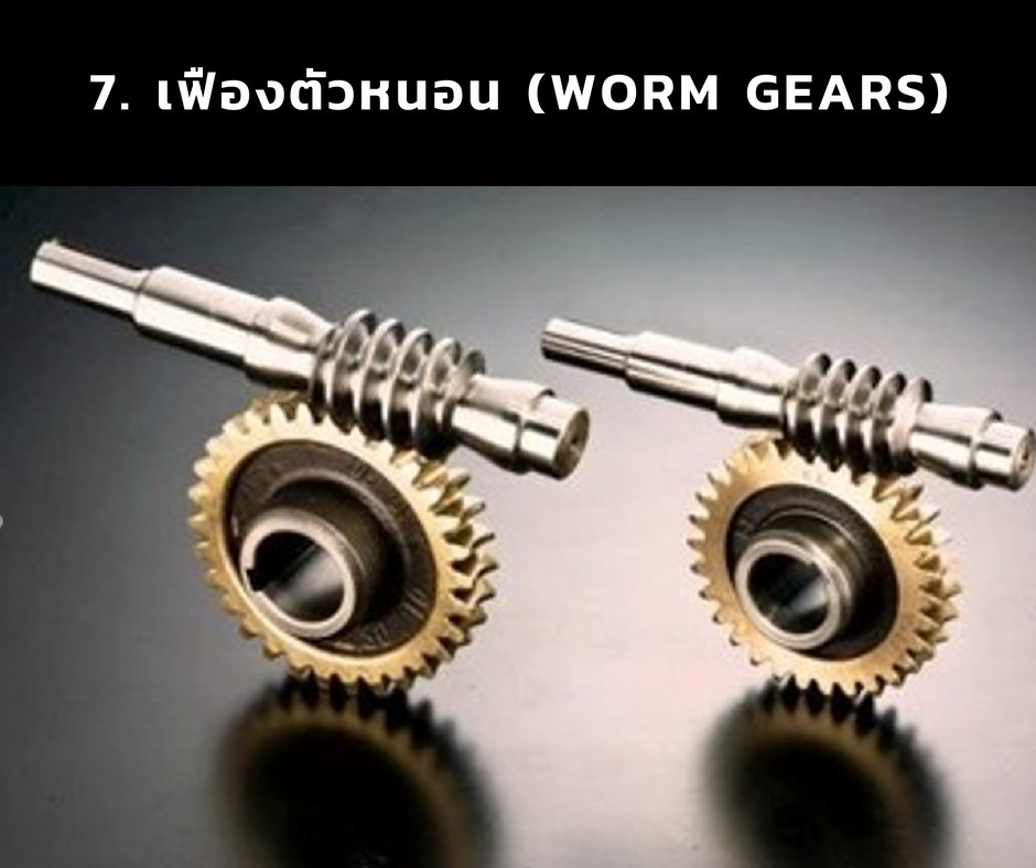 7. เฟืองตัวหนอน (Worm Gears)