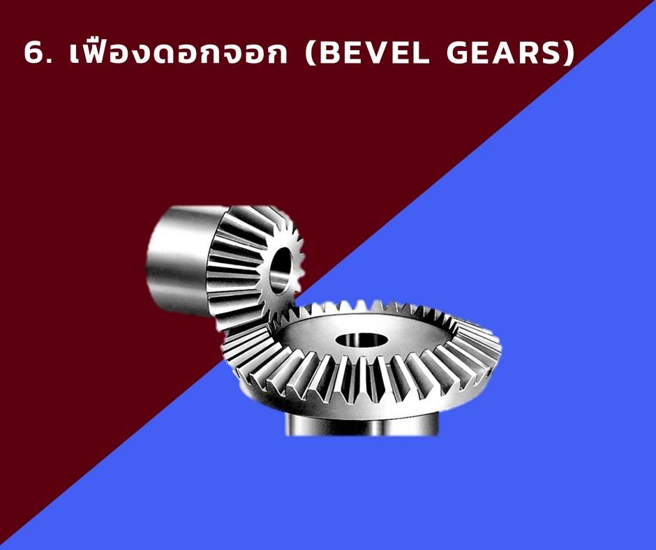 6. เฟืองดอกจอก (Bevel Gears)