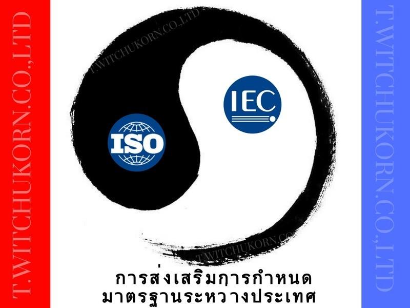 IEC&ISO