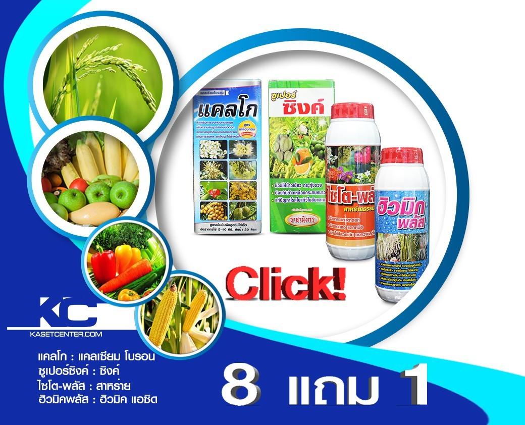 อาหารเสิรมพืช8แถม1