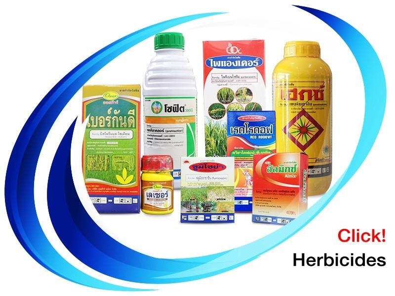 สารกำจดัวัชพืช แบบเลือกทำลาย (Herbicide)