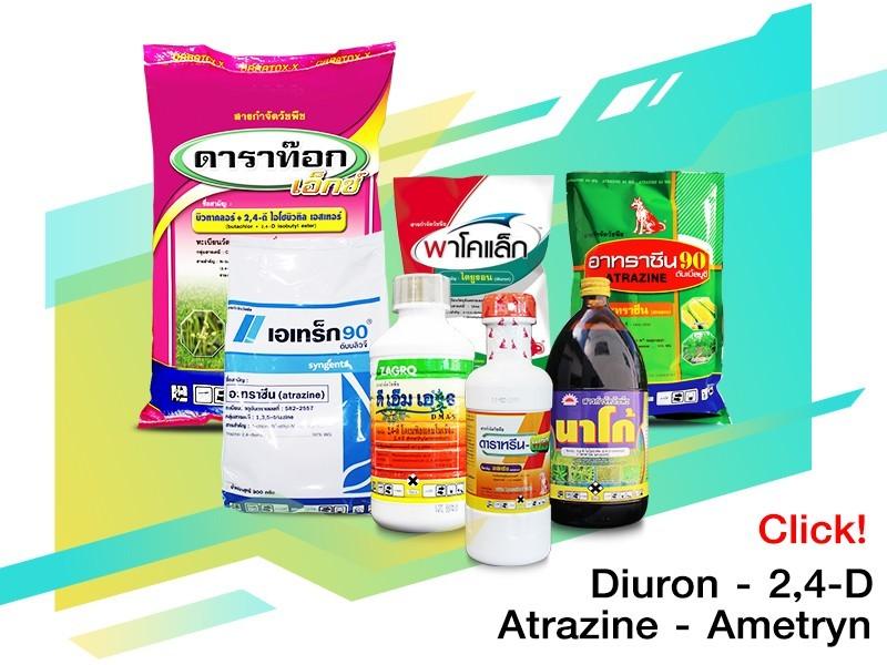 2,4-ดี - อาทราซีน-อามีทรีน-ไดยูรอน