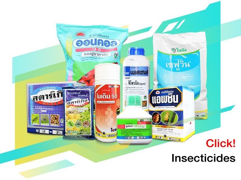 สารกำจัดแมลงศัตรูพืช (Insecticide)