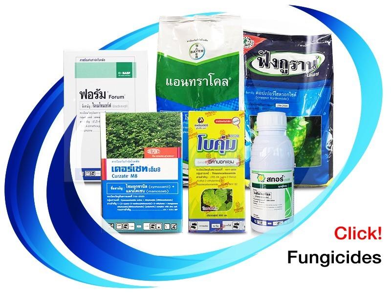 สารป้องกันกำจัดโรคพืช (Fungicide)