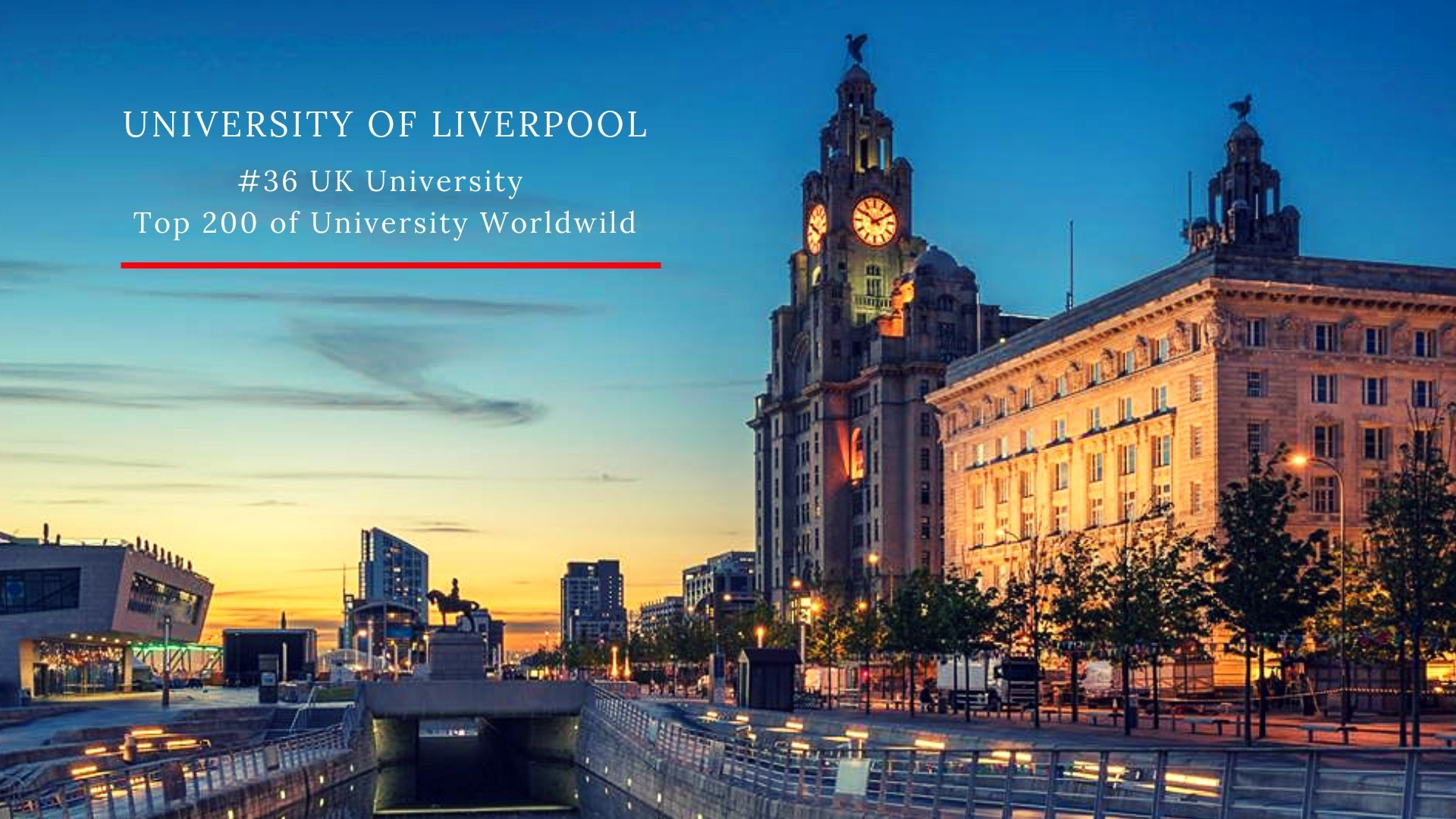 The University of Liverpool