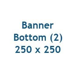 Bottom2