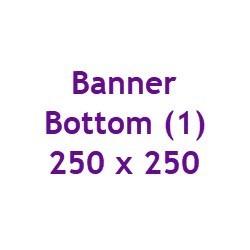 Bottom1