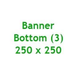 Bottom3