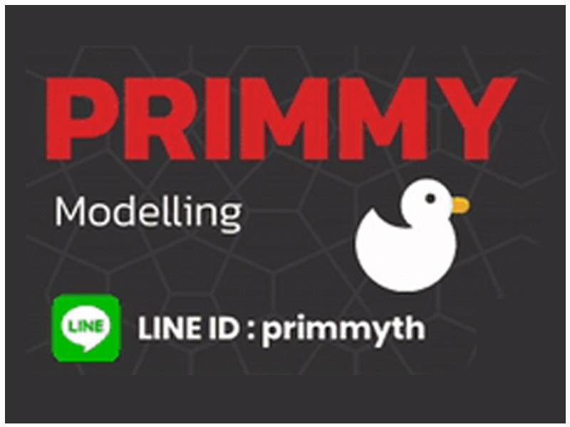 Primmy Modeling