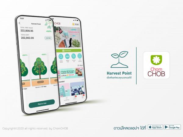 """""""ChomCHOB"""" พัฒนาฟีเจอร์ """"Harvest Point"""" ฝากพ้อยท์แบบปลูกต้นไม้ ไม่หมดอายุ รับแต้มเพิ่ม 10%"""