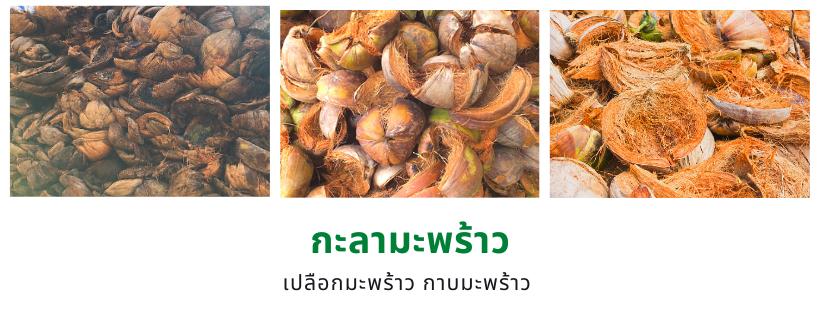 กะลามะพร้าว เปลือกมะพร้าว กาบมะพร้าว