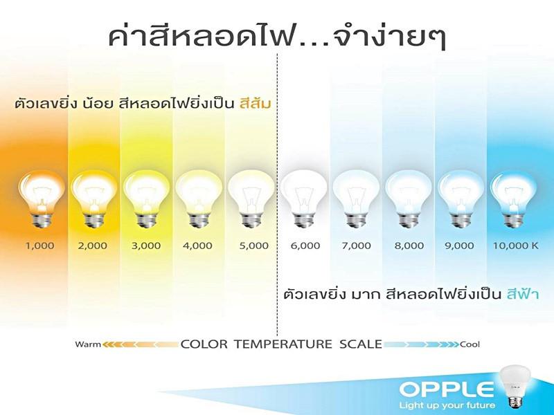 Warmwhite Color neon