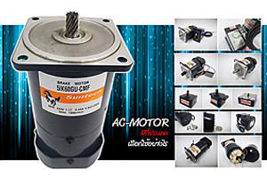 เอ.ซี มอเตอร์ ( AC Motor )